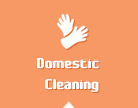 Cleaner Barnes